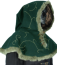 Embroidered Hood with Fur 2