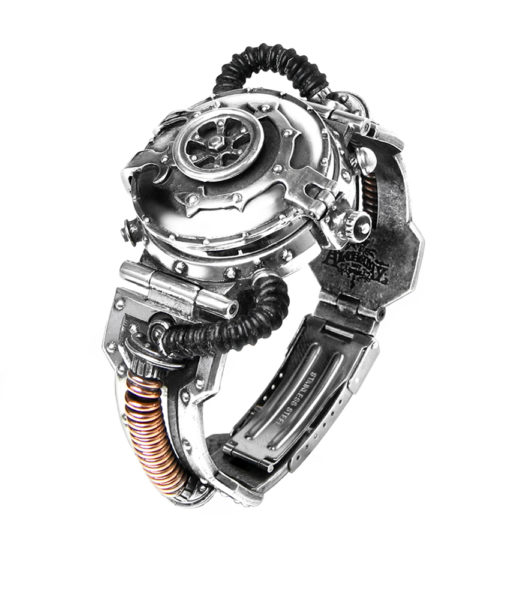 EER Steam-Powered Entropy Calibrator Watch 1