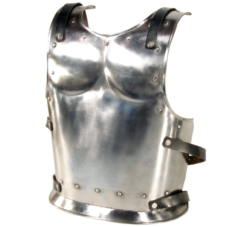 Backplate for Warrior or Drake- Size Small 1