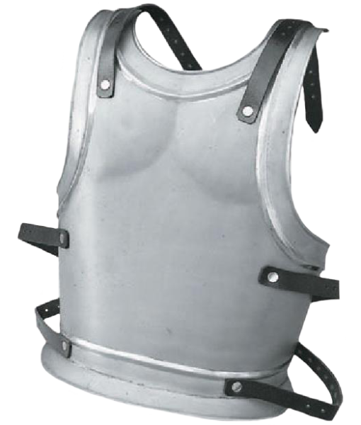 Backplate for King or Templar – Size Large 1