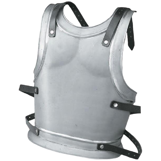 Backplate for King or Templar – Size Medium 1